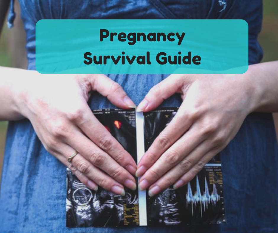 Pregnancy Survival Guide